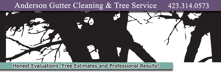 Anderson Gutter Cleaning and Tree Service